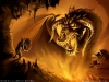 amazing-dragons-wallpapers-11