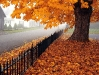 autumn-hq-wallpapers-58