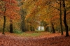 autumn-hq-wallpapers-64