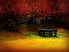 autumn-hq-wallpapers-67