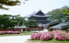 beautiful-korea-wallpapers-017