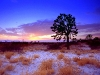 beautiful-winter-wallpapers-106