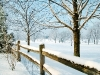 beautiful-winter-wallpapers-112