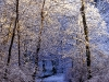 beautiful-winter-wallpapers-137