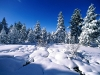 beautiful-winter-wallpapers-140