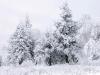 beautiful-winter-wallpapers-149