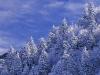 beautiful-winter-wallpapers-151