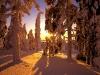 beautiful-winter-wallpapers-153