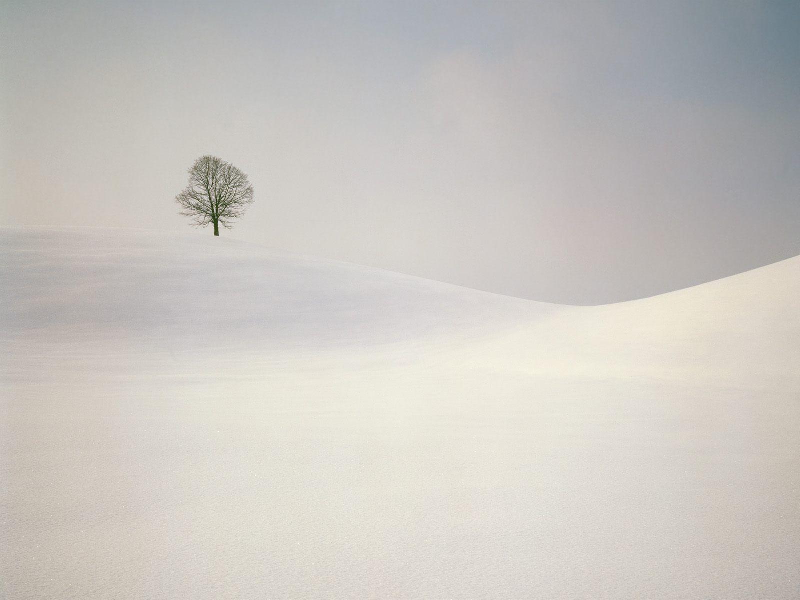 beautiful-winter-wallpapers-203