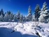 beautiful-winter-wallpapers-201