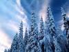 beautiful-winter-wallpapers-238