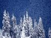 beautiful-winter-wallpapers-240