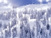 beautiful-winter-wallpapers-260