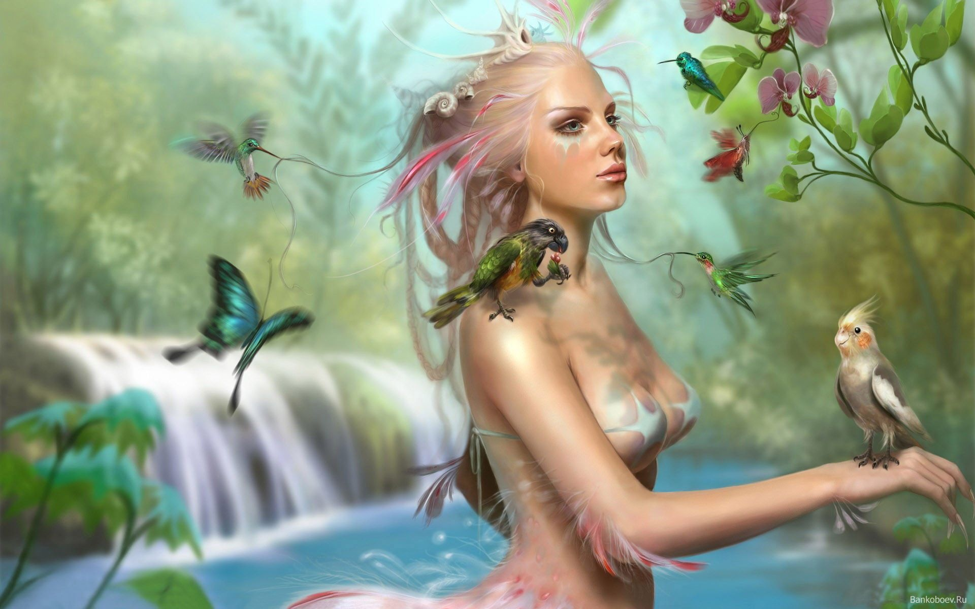 Best Water Nymph HD Wallpapers