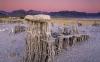USA, California, Mono Lake, Tufa towers with Sierra mountains at twilight