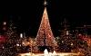 Christmas Tree Desktop HD Wallpaper