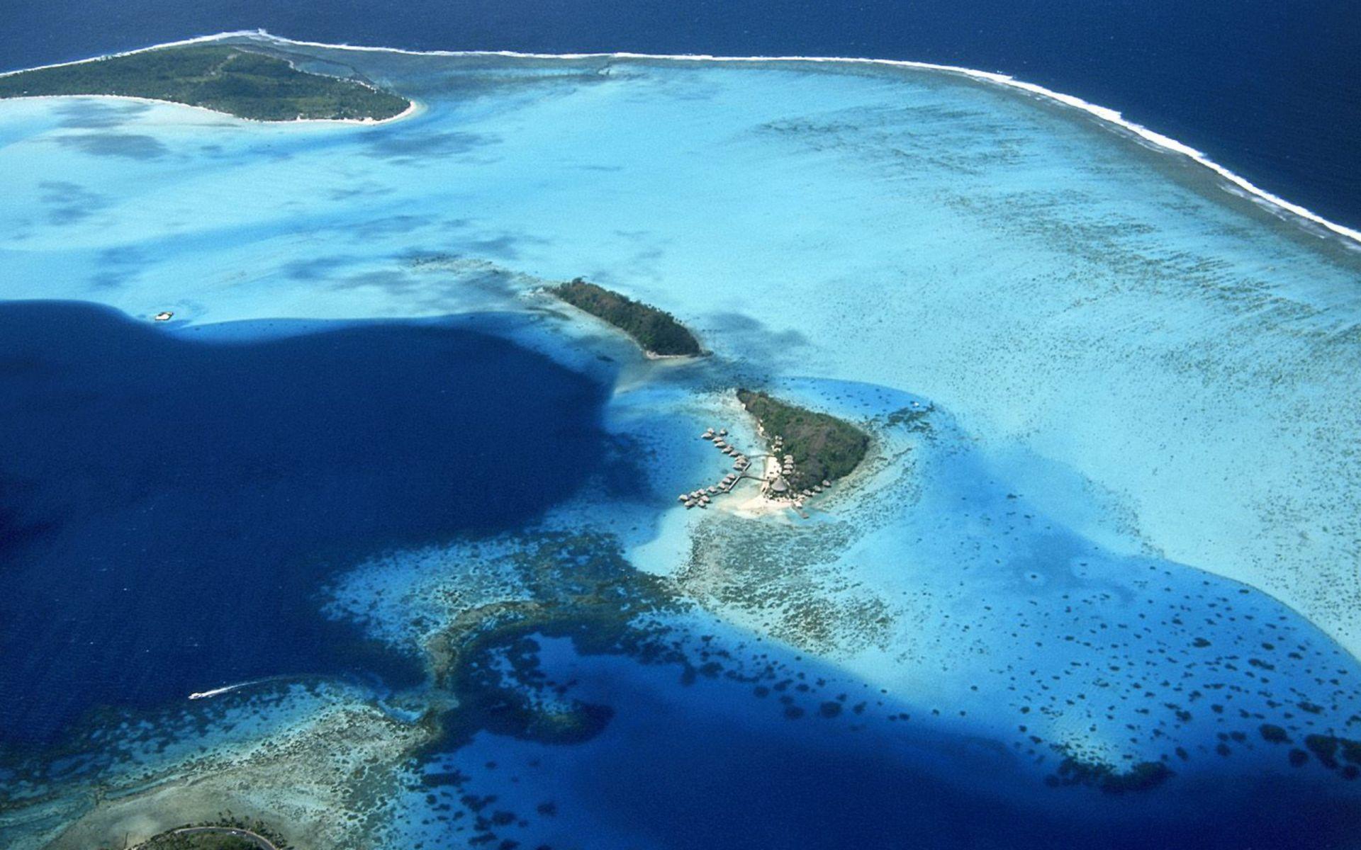 coral-reefs-hd-wallpaper-02