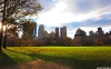 new-york-hd-pictures-and-wallpapers-049