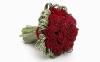 rose_009001