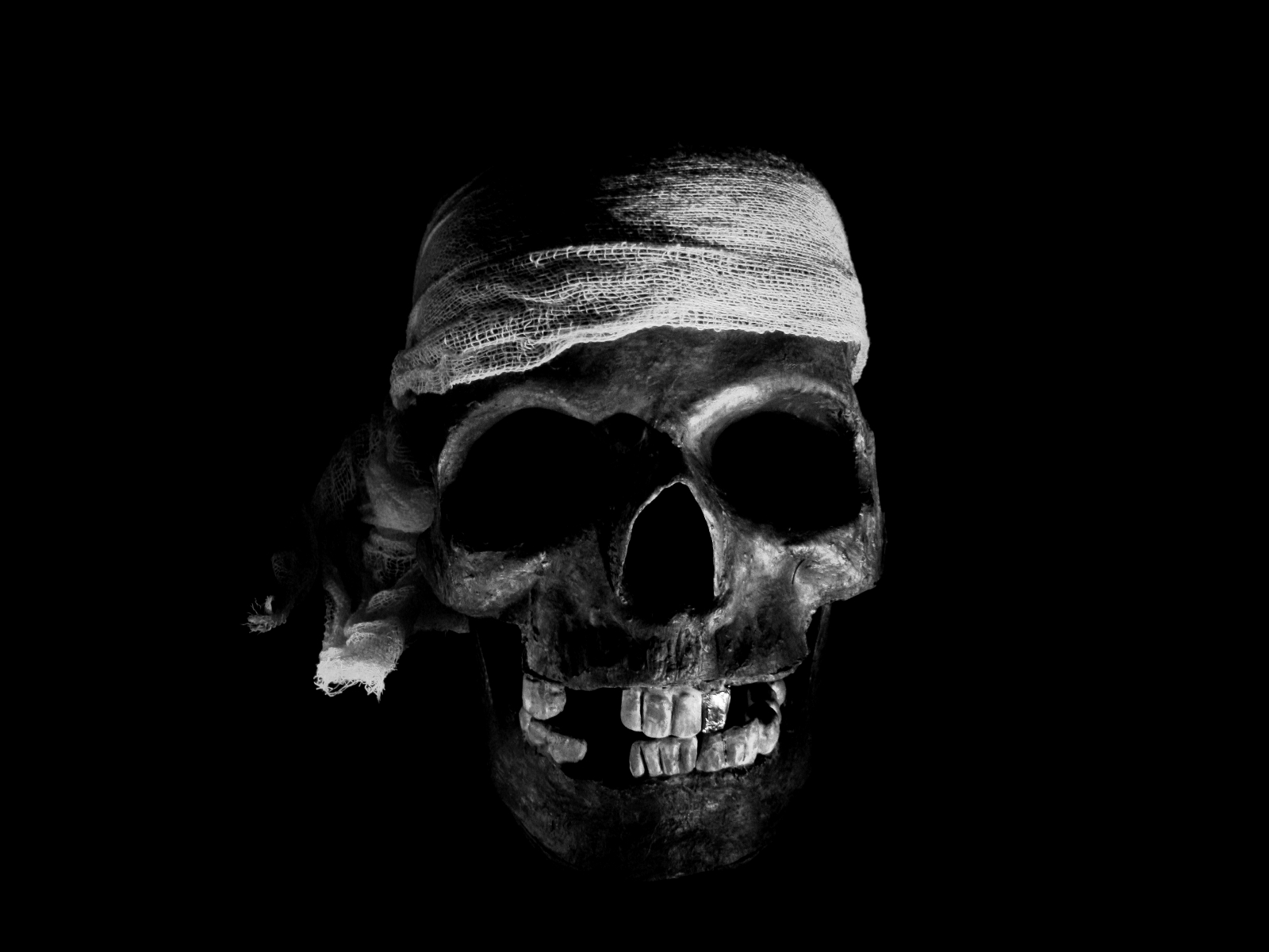 skull-hq-pictures-and-wallpaper-030
