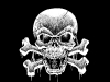 skull-hq-pictures-and-wallpaper-008