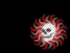 skull-hq-pictures-and-wallpaper-015