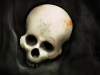 skull-hq-pictures-and-wallpaper-020