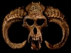 skull-hq-pictures-and-wallpaper-021