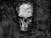 skull-hq-pictures-and-wallpaper-025