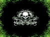 skull-hq-pictures-and-wallpaper-033
