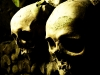 skull-hq-pictures-and-wallpaper-034