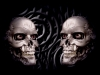 skull-hq-pictures-and-wallpaper-035