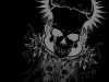 skull-hq-pictures-and-wallpaper-054