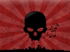 skull-hq-pictures-and-wallpaper-055