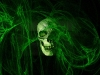 skull-hq-pictures-and-wallpaper-060