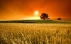 stuning-hd-landscapes-wallpapers-11