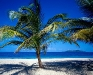 summer-hq-pictures-and-wallpaper-200