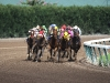 fight-to-the-finish-gulfstream-park-florida